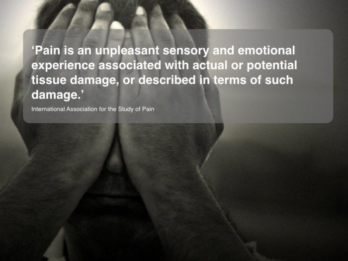 What is Pain Definitions and Suffering.003