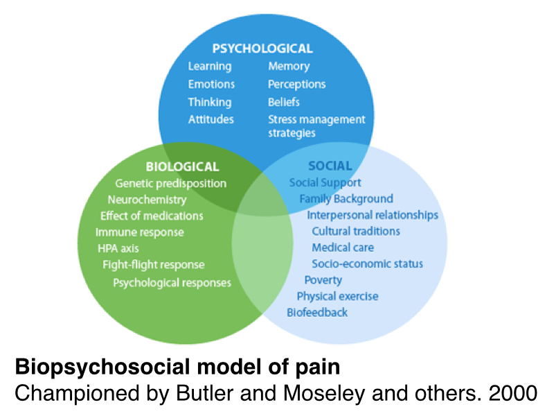 biomedical and biopsychosocial models of care Biomedical and biopsychosocial models if a biomedical model of (1977) supported the idea of using a biopsychosocial model in healthcare so as to give care.